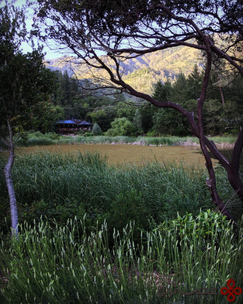 calistoga ranch, california