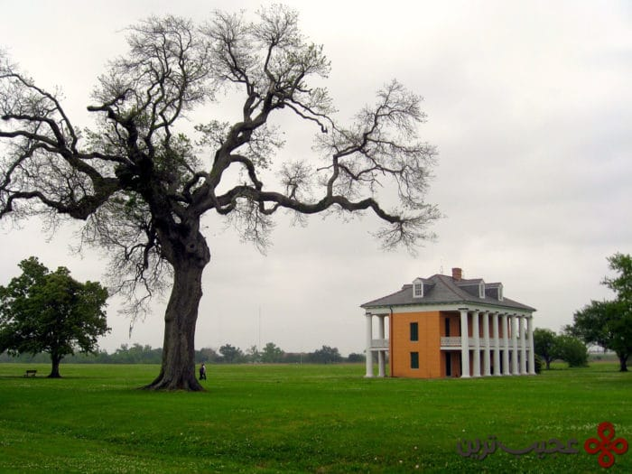chalmette battlefield and national cemetery
