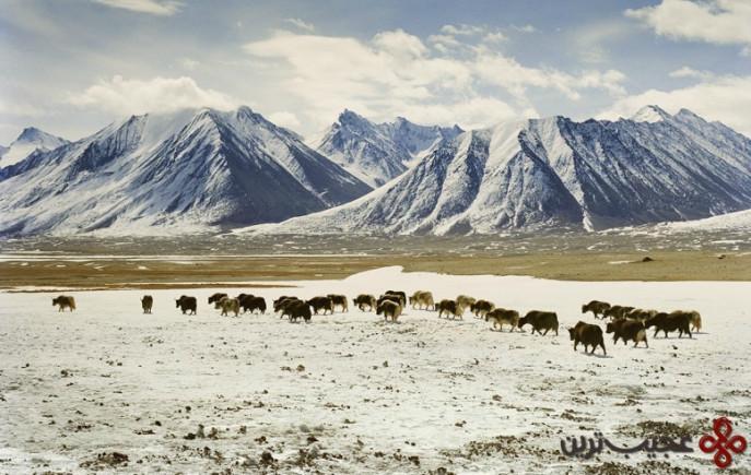 chaqmaqtin lake, afghanistan2