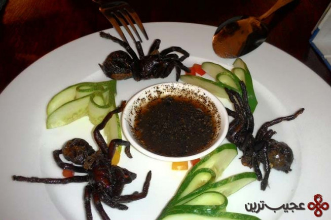fried tarantula in cambodian restaurant