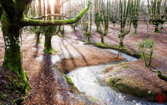 gorbea natural park1