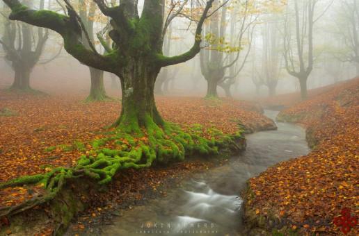 gorbea natural park2