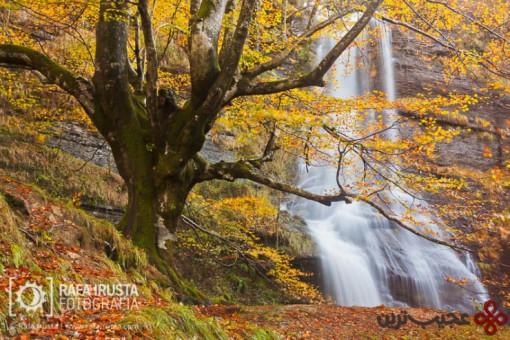 gorbea natural park3