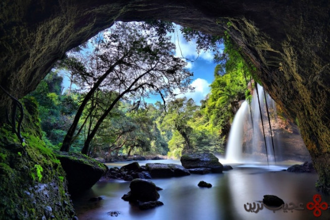 khao yai national park by suppalak klabdee 740x493