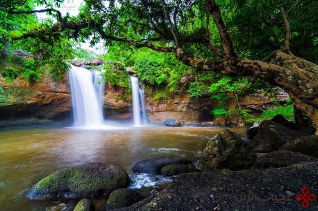 khao yai national park by taweesak boonwirut 740x491