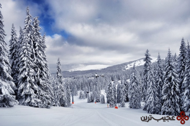 kopaonik – skiing and enjoying3