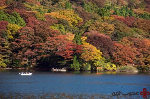 lake ashi2