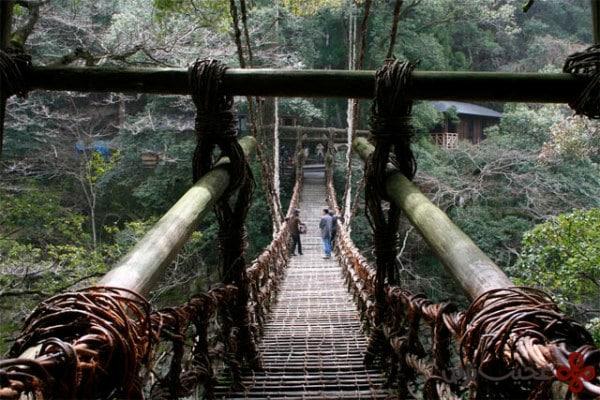 musou tsuribashi bridge, japan