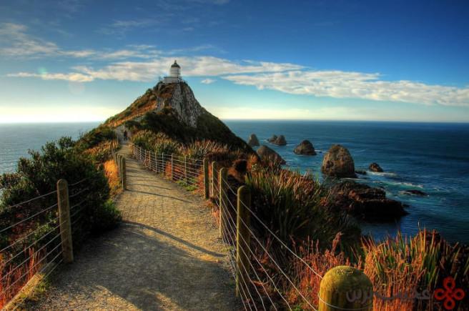 nugget point، منطقهی otago، نیوزیلند 1