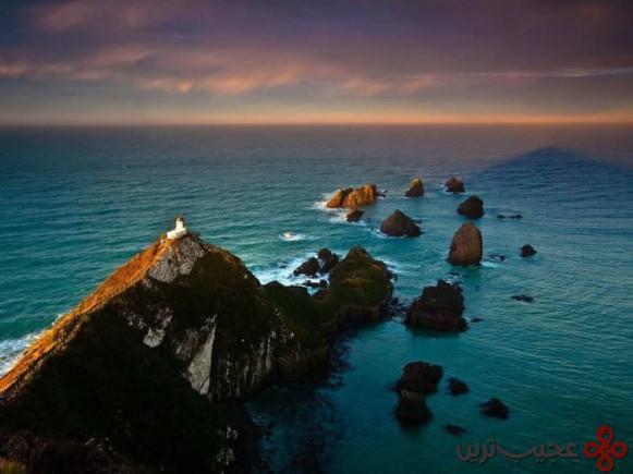 nugget point، منطقهی otago، نیوزیلند 2