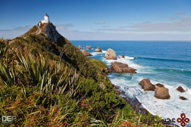 nugget point، منطقهی otago، نیوزیلند 3