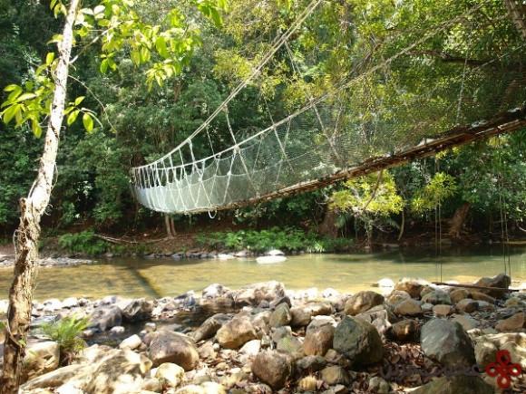taman negara national park malaysia1