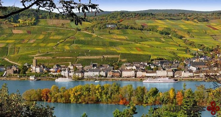 top german villages rüdesheim4