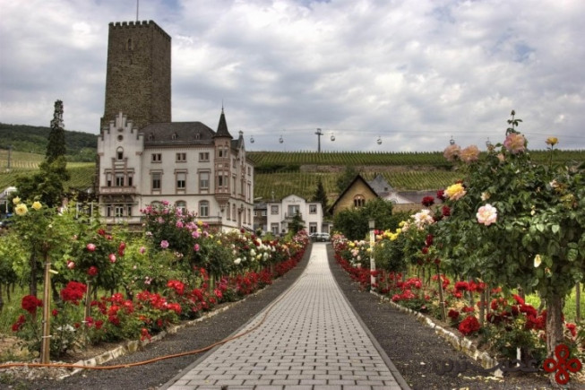 top german villages rüdesheim5