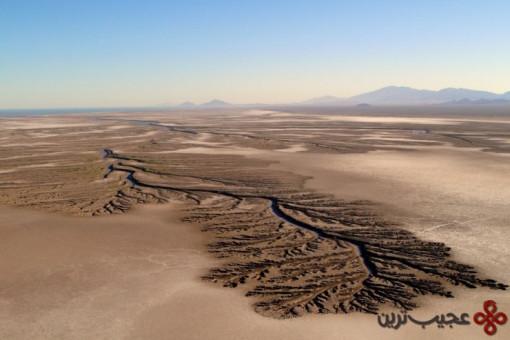 top mexico desert