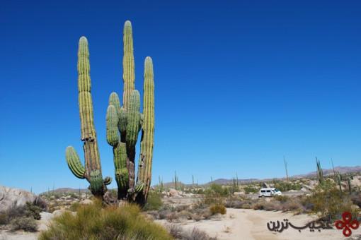 b7b40ba1 6226 40c7 bb3c aca62bc00d2a baja california desert 1
