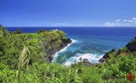 kilauea beach hawaii