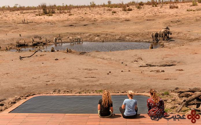 اقامتگاه سومالیسا بخشی از اقامتگاه افریکن باش، پارک ملی هوانگ، زیمبابوه (african bush camps somalisa camp)