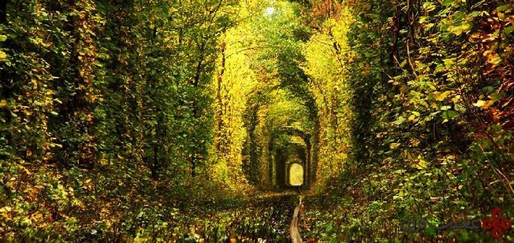 تونل عشق1