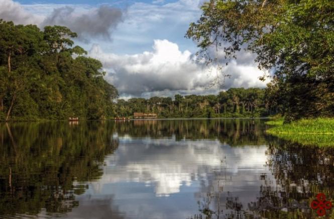 رود آمازون