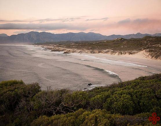 منظقه محافظتشده گروتبوس نیچر، خلیج واکر، آفریقای جنوبی (grootbos nature rserve, walker bay)