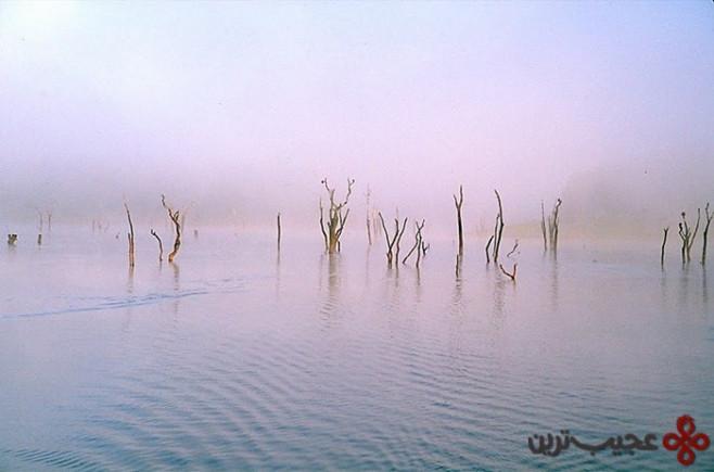 lake periyar, india4