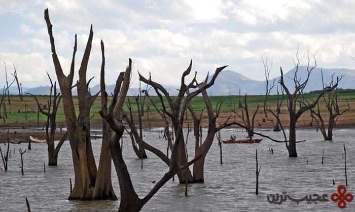udawalawe reservoir, sri lanka1
