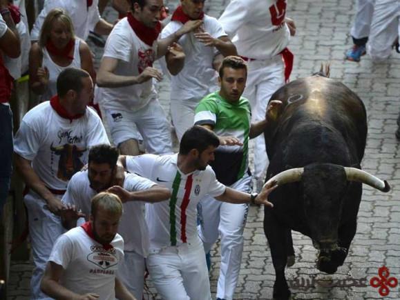 ۹ جشنوارهی دوندگی گاوها، اسپانیا