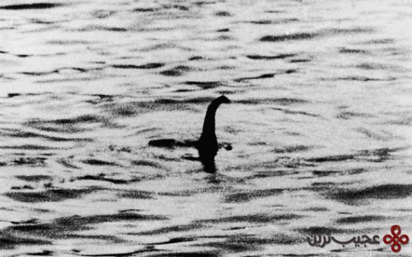 هیولای دریاچه لاخنس