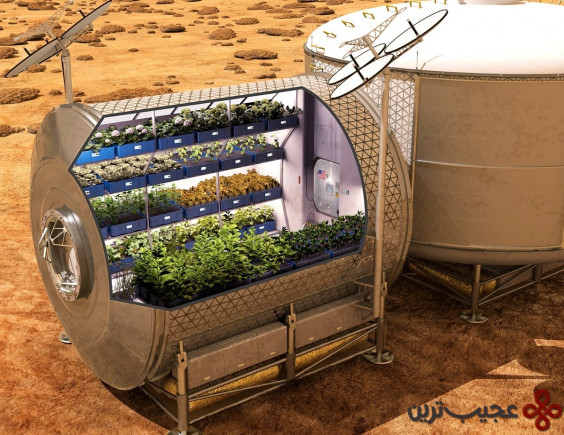 کاشت گلخانهای در فضا