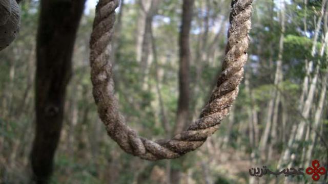 جنگل آئوکیگاهارا – جنگل خودکشی