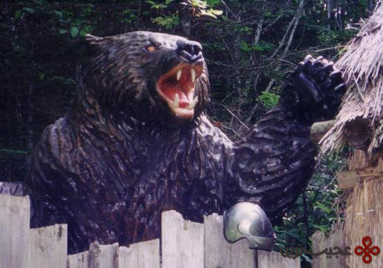 خرس بزرگ ژاپنی