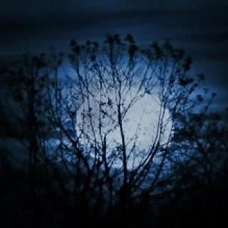 عکس کاور ۱۰ نکتهٔ جالب دربارهٔ کرهٔ ماه