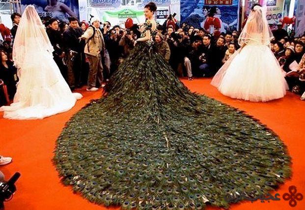 لباس عروس با پر طاووس