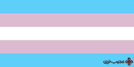 پرچم فرا جنسیتی