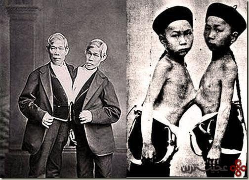 چانگ و انگ بانکر