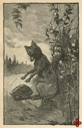 foxes and folklore