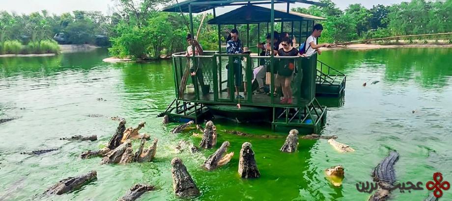 پادشاهی فیل در چونبوری (elephant kingdom)، تایلند