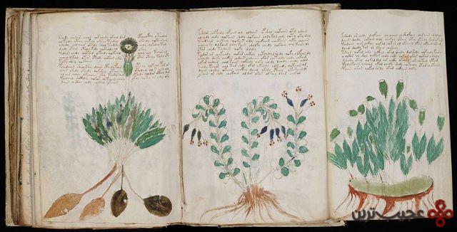 ۱۵ یک کتاب ۲۴۰ صفحه ای به نام دست نوشته های ووینیچ وجود دارد که گفته می شود در اوایل قرن ۱۵ به زبانی کاملا ناشناخته نوشته شدهاست